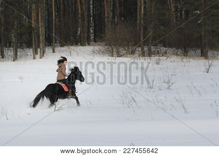 Young Woman Rides On Top A Bay Horse In Winter Countryside, Telephoto