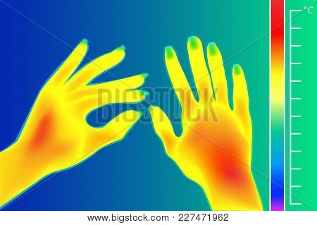 Thermal Imager Human Hands Vector Illustration. The Image Of A Female Arms Using Infrared Thermograp