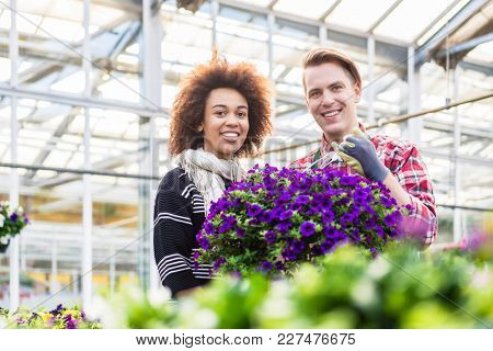 Low-angle view of a beautiful woman, thinking of buying a fragrant potted purple petunias at the advice of a skilled florist at the flower market