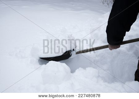 Manual Cleaning Of Snow In Winter. Plastic Black Shovel With Wooden Handle