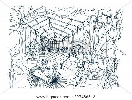 Freehand Sketch Of Interior Of Tropical Botanical Garden Full Of Cultivated Plants With Lush Foliage