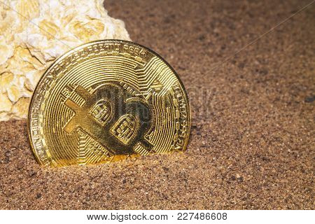 The Gold Coin Of The Crypto Currency Bitcoin Lies In The Sand Near The White Seashells Rock.