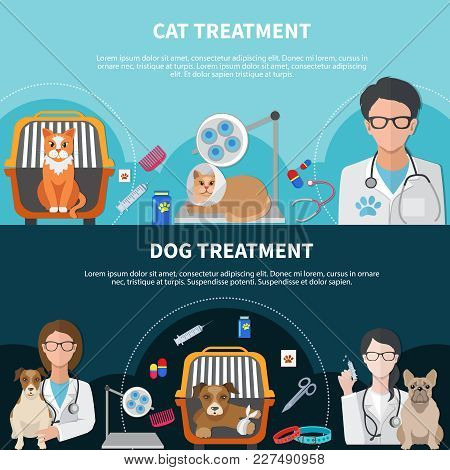 Cat And Dog Veterinary Treatment Surgical Procedures Medication Pet Insurance 2 Flat Horizontal Bann