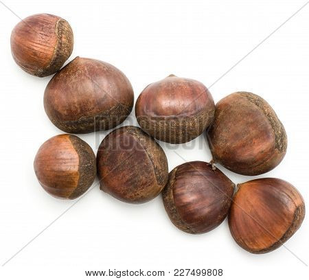 European Chestnuts Spanish Edible Isolated On White Background Raw Fresh Brown Nuts Top View