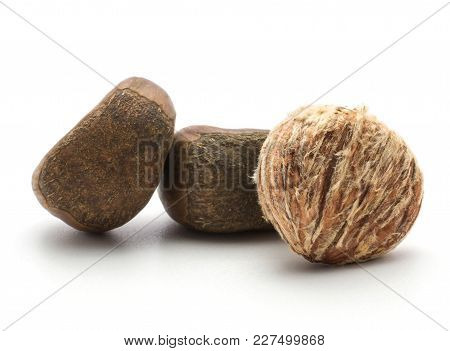 Peeled European Chestnut Compare With Two Spanish Edible In A Husk Isolated On White Background Raw