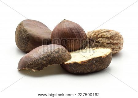 European Chestnuts Spanish Edible One Peel And Sliced Isolated On White Background Raw Fresh Brown N