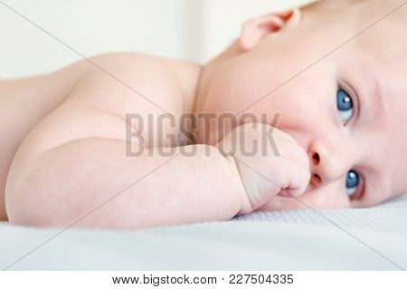 Portrait Of Infant Kid Lying On A Bed. Close-up Of Healthy Child Sucking His Fist. Focus On Fist Wit
