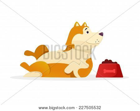 Funny Dog With Dog Food Lying Vector Flat Illustration. Dog Cartoon Character Isolated On White Back