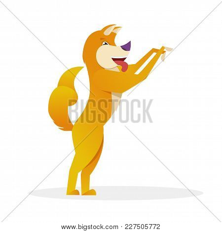 Funny Dog With Raised Tail Up Standing And Waiting For Friend Vector Flat Illustration. Dog Cartoon