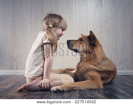 A Wonderful Little Girl And A Huge Dog Communicate With Each Other. The Dog Is Terrible, But Kind. A