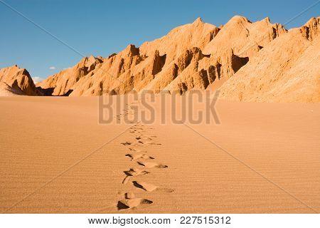 Footprints At Valle De La Muerte (spanish For Death Valley) Also Known As La Cordillera De La Sal (s