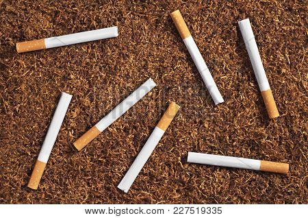 Tobacco And Cigarettes As Background, Top View