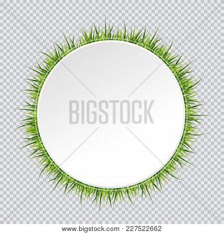 Spring Banner With Grass Border Around. Vector Illustration On Transparent Background.