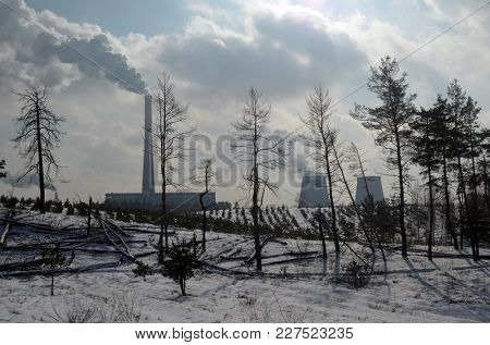 Chimney of power plant in the winter forest