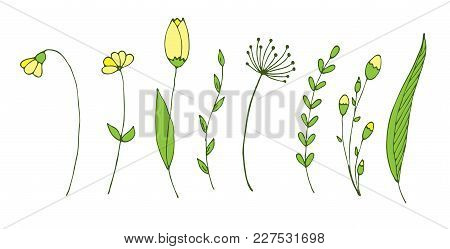 Set With Spring Branches And Flowers. Isolated Vector Elements For Design