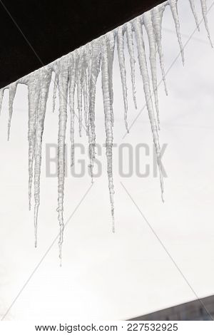 Dangerous Icicles Hang From The Snowy Roof Of The House. Big Icicles In The Streets Of The Winter To