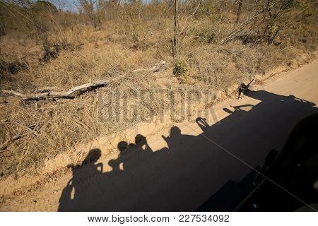 Shadow On The Ground Of People Enjoying A Safari Tour In An Open-top Vehicle
