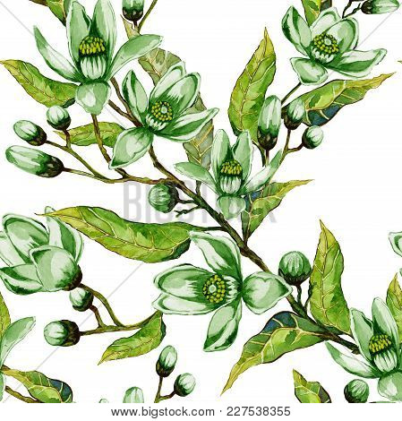 Orange Tree Flower In Green Color On A Twig. Springtime Seamless Pattern. Spring Flourish. White Bac