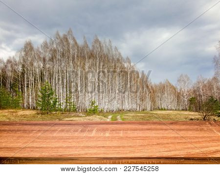 Empty Wooden Table With Blurred Background Of Early Spring Lanscape. Can Be Used For Display Or Mont