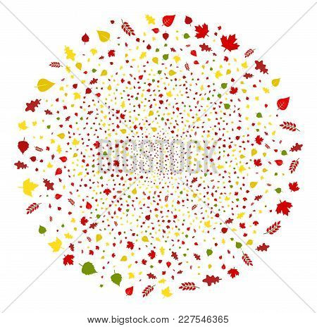 Autumn Tree Leaves Exploding Spheric Cluster. Object Pattern Made From Random Autumn Tree Leaves Des