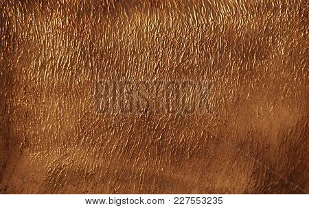 Sharped Gold Stone Wall Texture Natural Light
