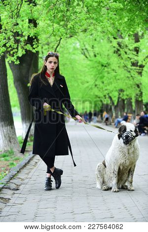 Woman Owner With Pet Outdoor. Gir Walk Dog In Spring Park. Love, Care, Trust. Pet, Companion, Friend