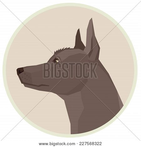 Dog Collection Xoloitzcuintli Mexican Hairless Dog Geometric Style Avatar Icon Round Set