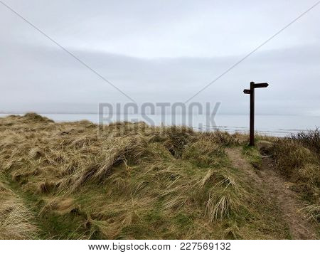 Coastal sand dune footpath direction signpost cloudy day