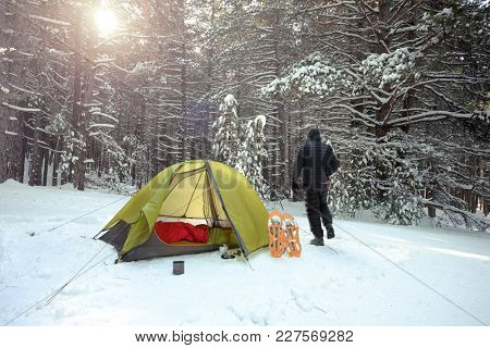 green tent in the snow covered pinewood of Etna Park, Sicily