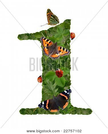 number of green leaves with butterfly and ladybug poster
