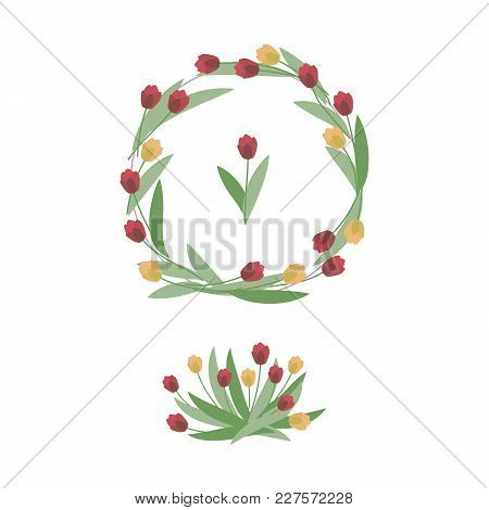 Composition And Wreath Of Red And Yellow Tulips With Green Leaves On A White Background.