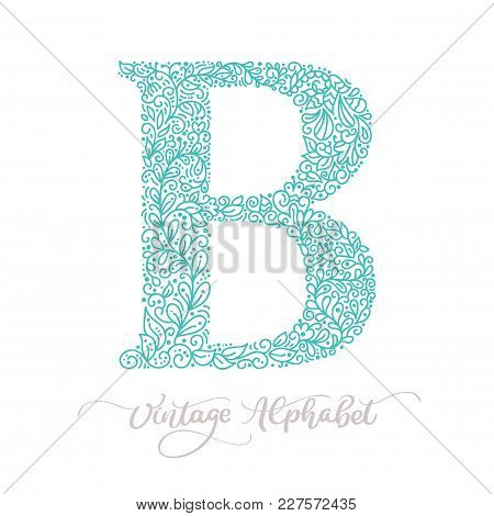 Hand Drawn B Letter Calligraphy Vintage Logo Design Template. Vector Elements For Corporate Identity