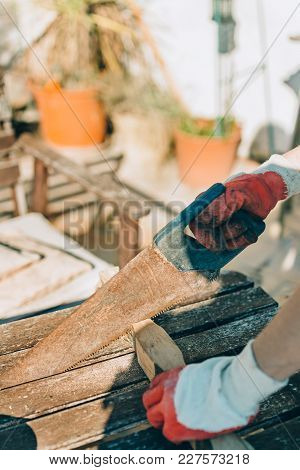 Woman Sawing A Wood, With Work Gloves On The Table. Of Day