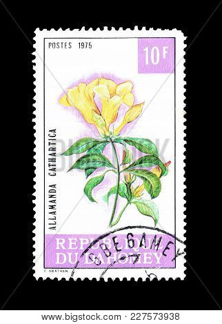 Dahomey - Circa 1975 : Cancelled Postage Stamp Printed By Dahomey, That Shows Golden Trumpet Flower.