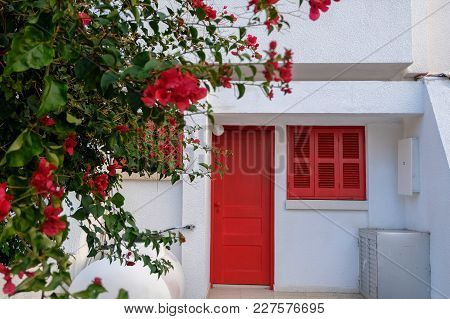 White House With Red Door, Window And Flowers In Larnaca, Cyprus