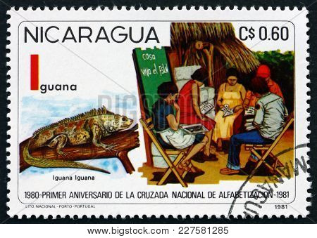 Nicaragua - Circa 1981: A Stamp Printed In Nicaragua Shows Fight Against Illiteracy, Green Iguana, I