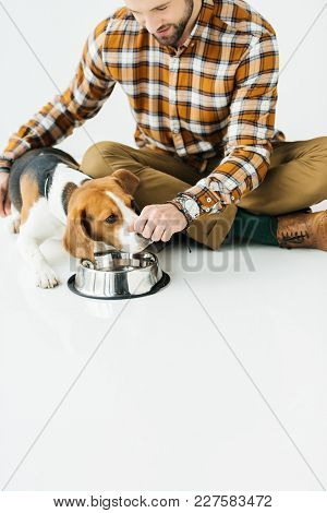 View Of Dog Sniffing Food In Man Hand