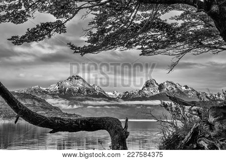 A View Of The National Park Of Tierra Del Fuego, In Argentina, With Snowy Mountains In The Distance