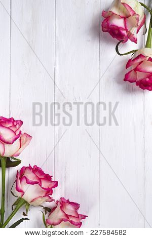 Roses Frame On A Wooden White Background. The Concept Of A Post Card With Copy Space, Flat Lay