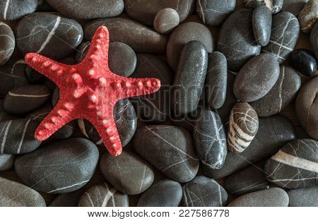 Sea pebble stones and starfish as a natural background