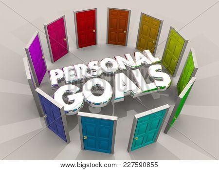Personal Goals Doors Paths Future Success 3d Illustration