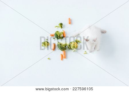 Top View Of Fresh Vegetables And Cute Furry Rabbit On White