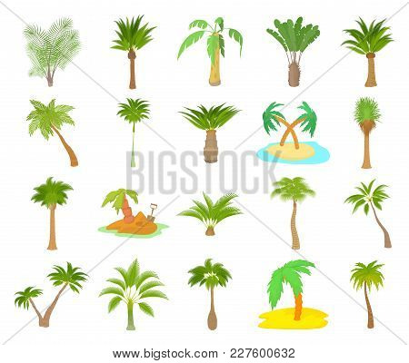 Palm Tree Icon Set. Cartoon Set Of Palm Tree Vector Icons For Web Design Isolated On White Backgroun