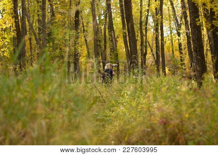 Lady Taking Photos In A Forest During Fall