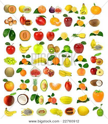 large collection of fruit poster