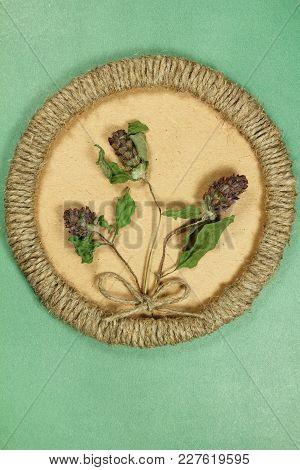 Herbarium. Prunella Vulgaris. Dry Plants In Framework Made Of Jute Thread. Scrapbooking. Dried Flowe
