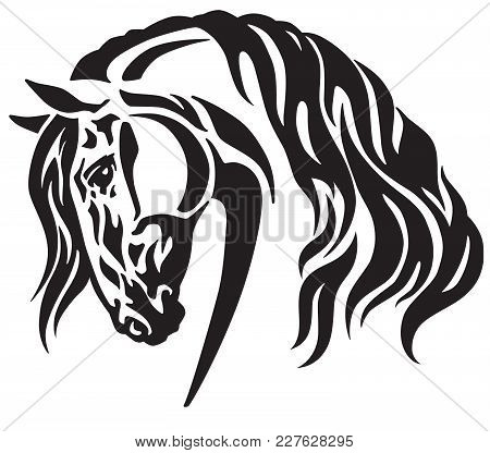 Head Of Heavy Draft Horse . Black And White Tribal Tattoo Style Vector Illustration