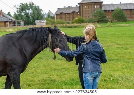 Girls Feed A Black Horse On A Green Lawn In The Fall.