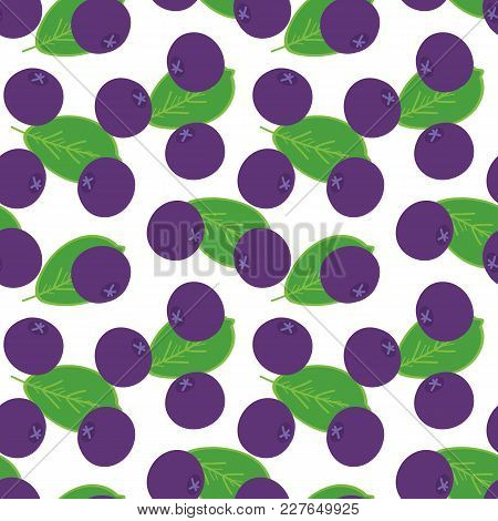 Doodle, Hand Drawn Maqui Berries And Leaves Seamless Pattern Background.