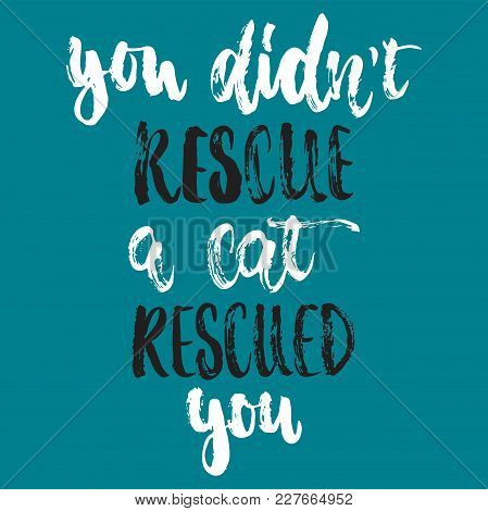 You Didn't Rescue A Cat Rescued You- Hand Drawn Lettering Phrase For Animal Lovers On The Dark Blue